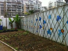 幼儿园户外植物种植区布置图片