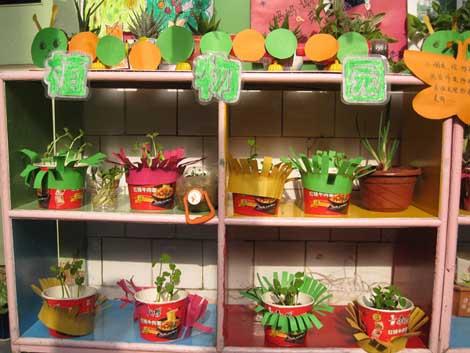 幼儿园自然角布置:植物园