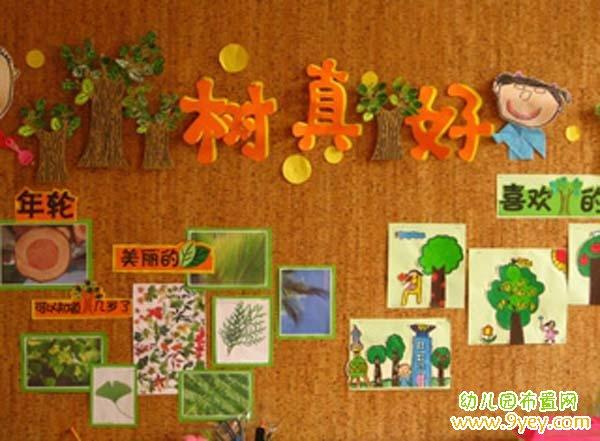 幼儿园植树节主题墙设计:树真好