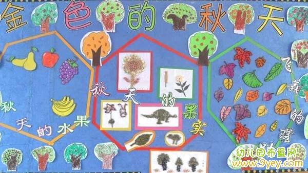 幼儿园学前班秋季主题墙布置图片:金色的秋天